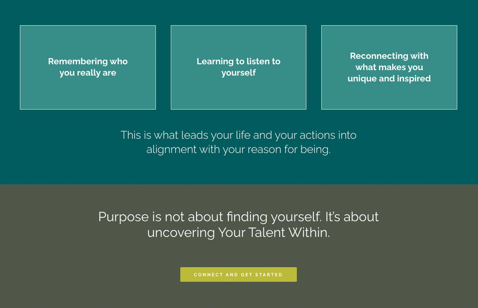 your-talent-within-wordpress-website-detail